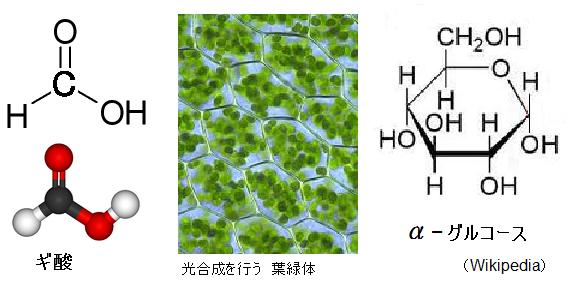 Formic-acid