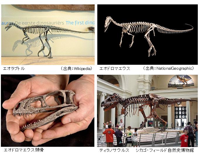 Eoraptor_Eodromaeus