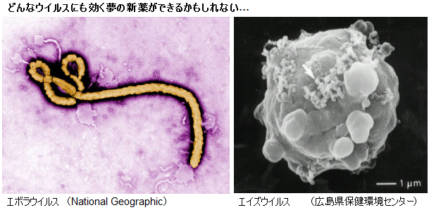 Ebola_Aids_virus