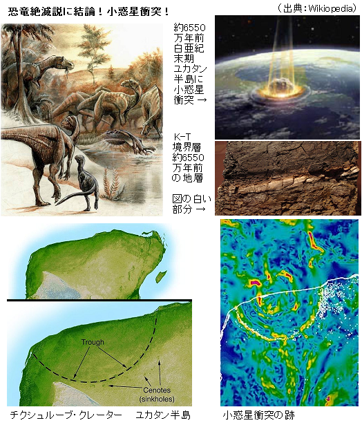 恐竜絶滅説に結論!ただ1回の小惑星衝突 巨大津波は300m ...