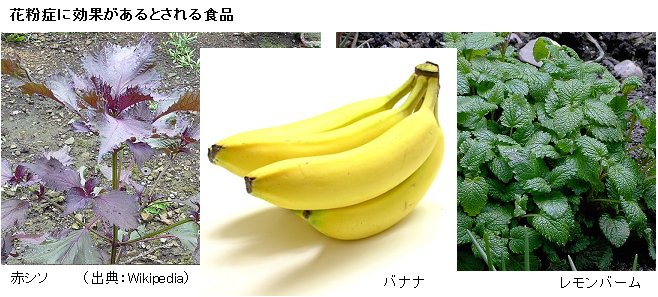 Red_Shiso_Banana_lemonBarm