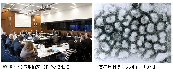 WHO_H5N1