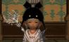 kyaraku_ff_01_2