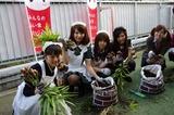 2011syukaku_19