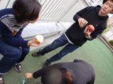 licolita_ichigozome6