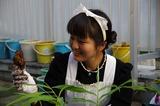 2011syukaku_18