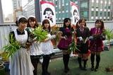 2011syukaku_20