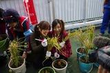2011syukaku_13