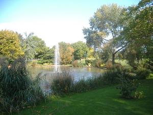 089_Garden@University of Surrey