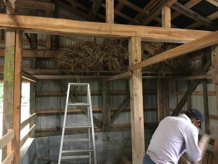 小屋の整備 ワラ 置き場 (2)