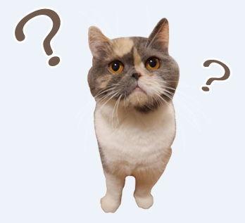 LINEスタンプ ネコ 猫 スタンプ 作成 無料