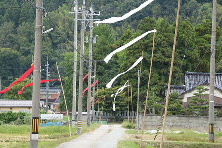 風 感じる 幟 旗 写真 (2)