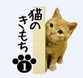 LINE スタンプ 猫のきもち 写真