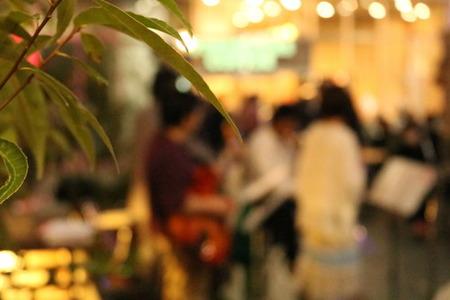 イベント ナイトガーデン 夜の部 ジャズ コンサート (9)