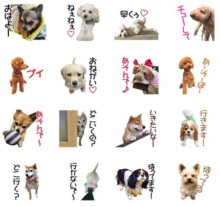 犬 LINE スタンプ 犬のきもち 1