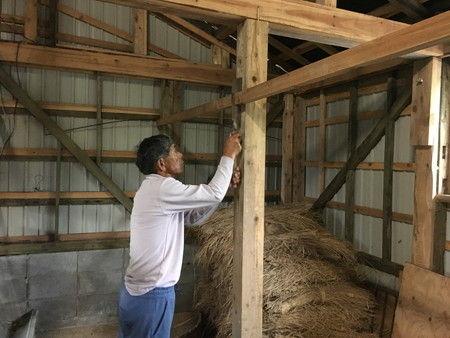 小屋の整備 ワラ 置き場 (1)