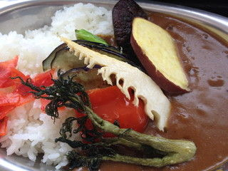 徳光PA 野菜カレー (1)