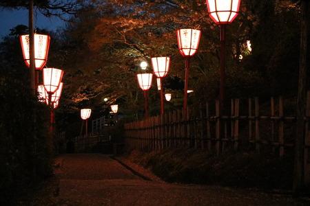 1 氷見市 朝日山 夜景 桜 ライトアップ (1)