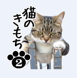 LINEスタンプ ネコ 猫 スタンプ 作成