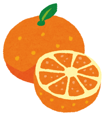 fruit_orange2