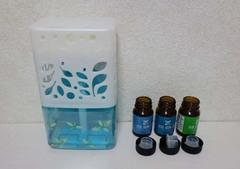 虫除け芳香剤5