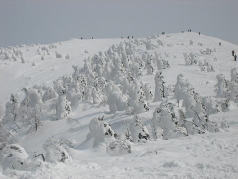 ski 022