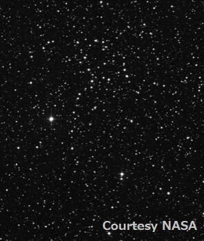 NGC1664