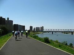 江戸川左岸を下る
