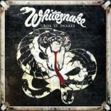 whitesnake_box
