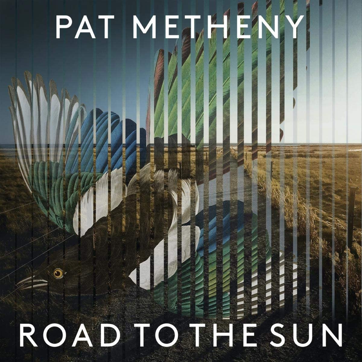 pat metheny_road to the sun