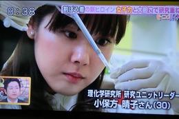 小保方晴子4
