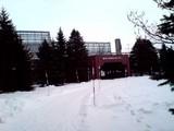 H19-12-29 百合が原公園
