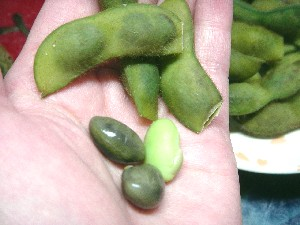 黒豆の枝豆!もっちりコクがあって美味しい!
