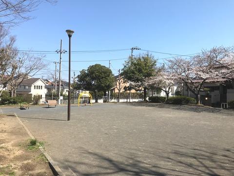 柿の木公園0325