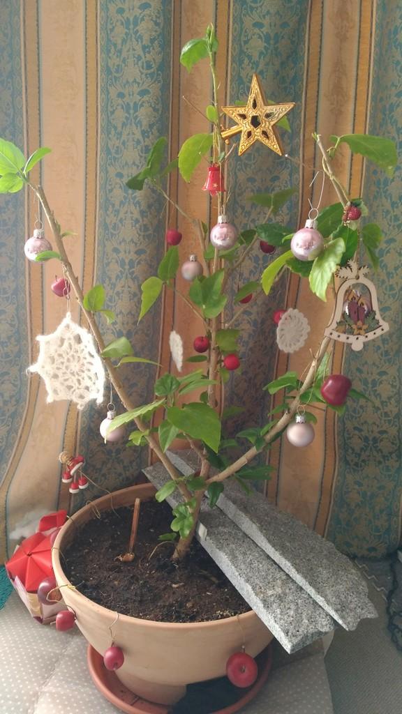 http://livedoor.blogimg.jp/linda2006/imgs/6/c/6c9d40e2.jpg