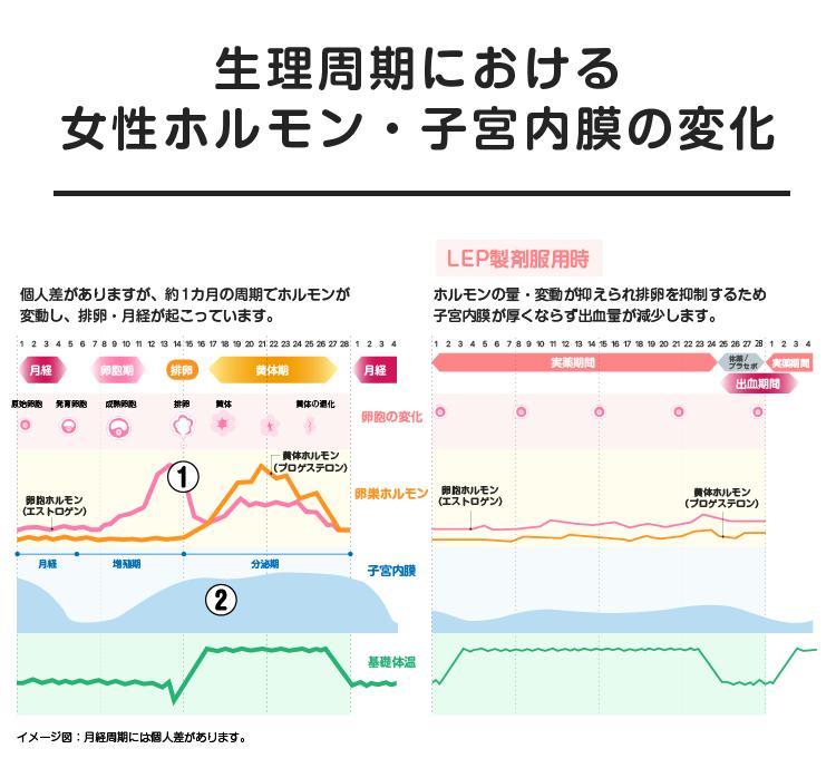 09_04_生理周期における 女性ホルモン・子宮内膜の変化