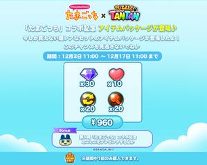 960package_twitter