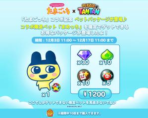 1200package_twitter