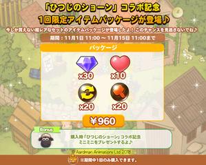 01_limitedpackage_C_twitter
