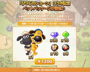 01_limitedpackage_B_twitter