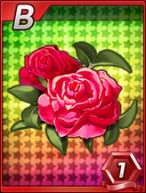 C_RedRose_B
