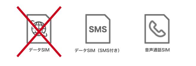 データSIMはありません