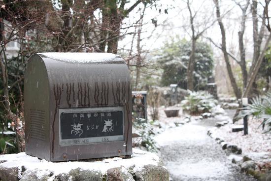 雪のウエディング