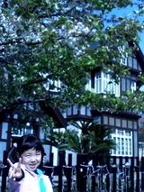 桜と三井倶楽部