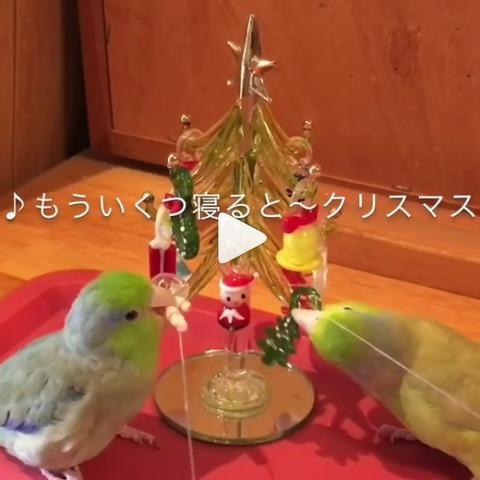 20171120Xmas動画キャプ2