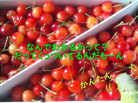 DSC_0039 (2)-1