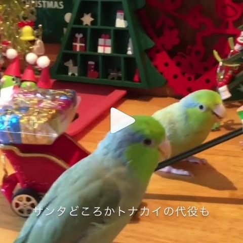 20171225Xmas動画キャプ1