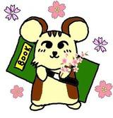 liss_桜