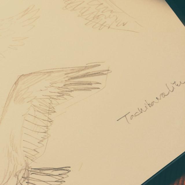 20160212_sketch-02_640