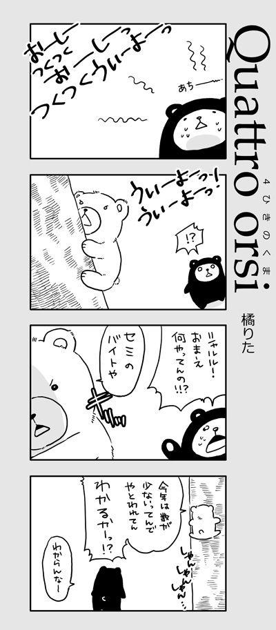 4kuma_02